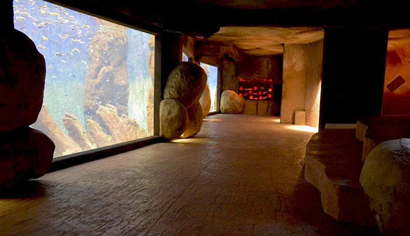 korytarz-akwarium-betonowy-chodnik-skaly