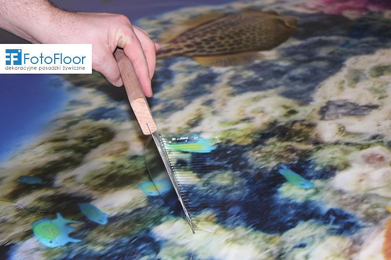 nanoszenie-bezbarwnej-zywicy-fotofloor-3d-d