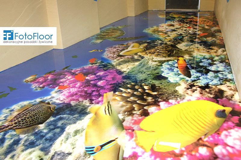 ryby-rafa-koralowa-akwarium-d