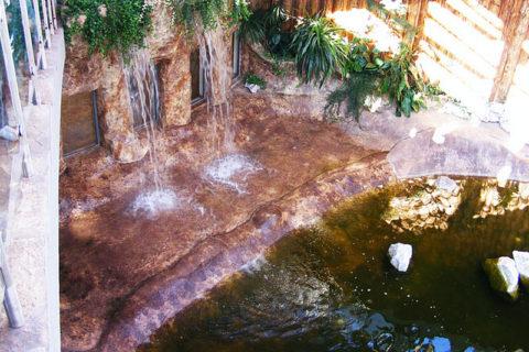 wodospad-stawik_cr
